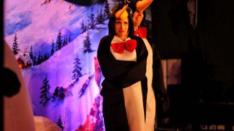 Teatr-Katarynka-Spektakl-Polarna-Przygoda-(3)
